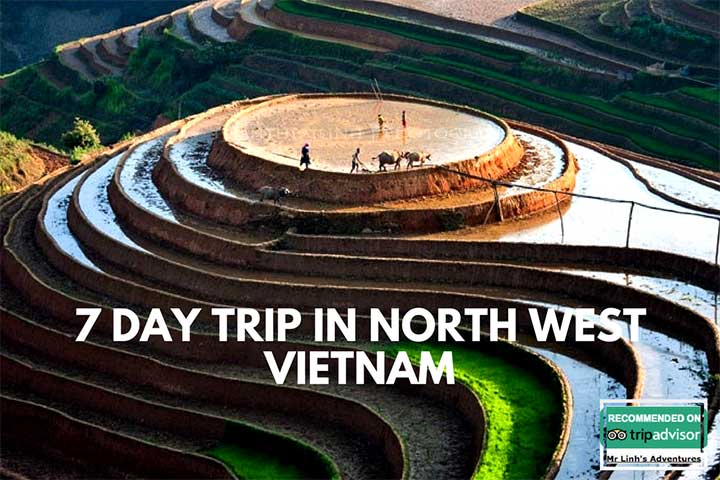 Review of 7 day trip in North West Vietnam a tourist free trip!!