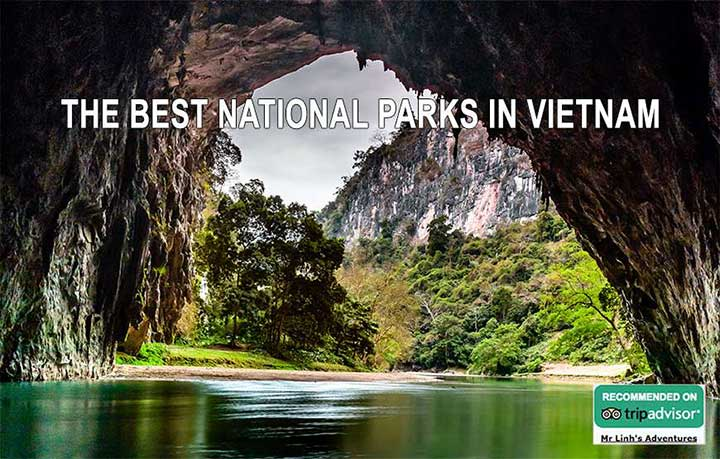 The Best National Parks in Vietnam