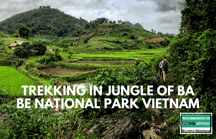 Trekking in Jungle of Ba Be National Park Vietnam