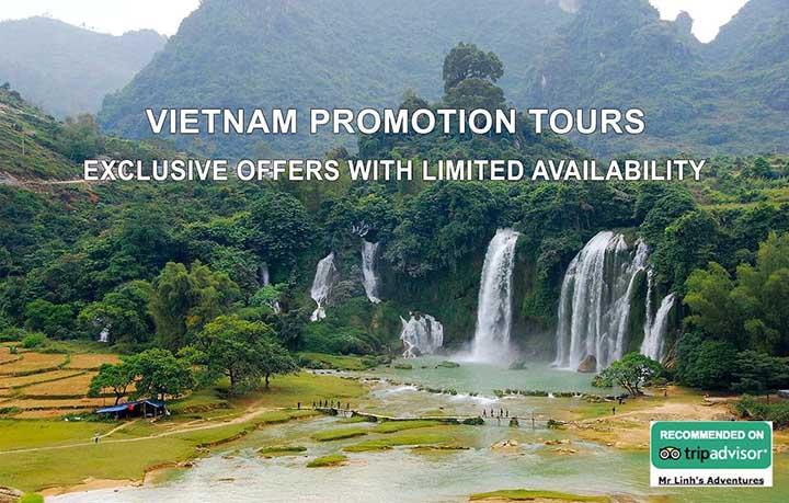 Vietnam promotion tours: exclusive offers with limited availability